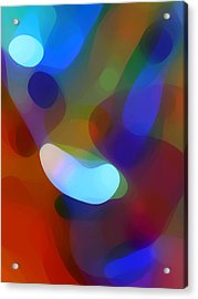 Falling Light Acrylic Print by Amy Vangsgard