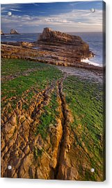 Panther Beach - Falling  Acrylic Print