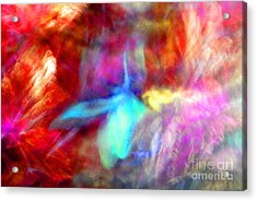 Falling Petal Abstract Red Magenta And Blue B Acrylic Print