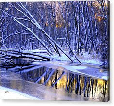 Acrylic Print featuring the photograph Falling by Terri Gostola