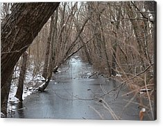 Falling Trees On A Frozen Canal Acrylic Print by Bill Helman