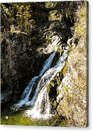 Falling Water Acrylic Print by Curtis Stein