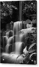 Falling Waters Acrylic Print by Diana Boyd