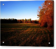 Acrylic Print featuring the photograph Fallow Field by Greg Simmons