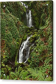 Falls At Rainer II Acrylic Print