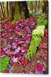 Fall's Carpet Acrylic Print