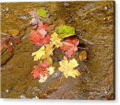 Falls Colors 6349 Acrylic Print