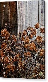 Fall's Fleeting Memories Acrylic Print