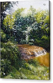 Falls Acrylic Print by Gregg Hinlicky