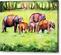 Family Of Elephants Acrylic Print by Maria Barry