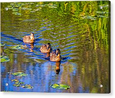 Family Outing On The Lake Acrylic Print by Ken Stanback