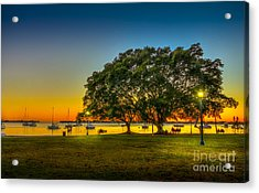Family Sunset Acrylic Print