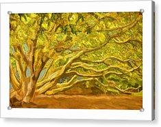 Family Tree Acrylic Print