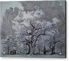 Family Tree Acrylic Print by Mark Greenhalgh
