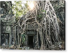 Famous Old Temple Ruin With Giant Tree Roots - Angkor Wat - Cambodia Acrylic Print by Matteo Colombo