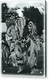 Fancy Dancer In Silver Screen Acrylic Print by Scarlett Images Photography