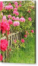 Fancy Fence Acrylic Print