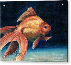 Fancy Goldfish Acrylic Print by Linda L Martin