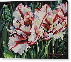 Fancy Parrot Tulips Acrylic Print