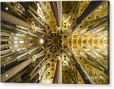 Fantabulous Sagrada Ceiling Acrylic Print by Deborah Smolinske