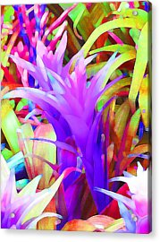 Fantasy Bromeliad Abstract Acrylic Print by Margaret Saheed