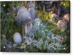 Fantasy In Miniature Acrylic Print