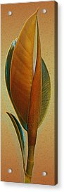 Fantasy Leaf Acrylic Print by Ben and Raisa Gertsberg