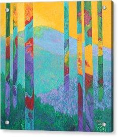 Fantasy Ridge Acrylic Print by Nancy Jolley