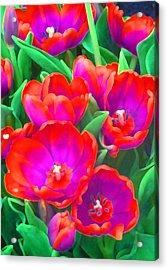Fantasy Tulip Abstract Acrylic Print by Margaret Saheed