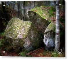 Fantasy Woods Acrylic Print by Lutz Baar