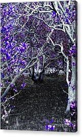 Fantasywood Acrylic Print