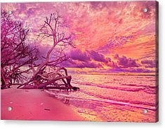 Farewell To The Day Acrylic Print by Betsy Knapp