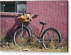 Farm Bicycle Acrylic Print by Mary Zeman
