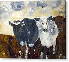 Acrylic Print featuring the painting Farm Cows by Aleezah Selinger