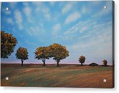 Farm Acrylic Print by DC Decker