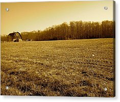 Farm Field With Old Barn In Sepia Acrylic Print by Amazing Photographs AKA Christian Wilson