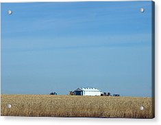 Farm House Kansas Acrylic Print
