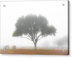 Farm On A Foggy Morning Acrylic Print