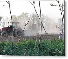 Acrylic Print featuring the photograph Farm Life  by Michael Krek