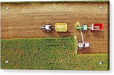 Farm Machines Harvesting Corn In September, Viewed From Above Acrylic Print by JamesBrey