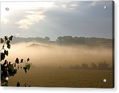 Farm Morning By Angieclementine Acrylic Print by Angie Phillips