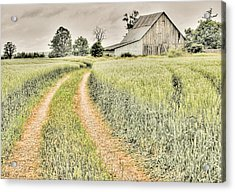 Farm On Diamondview Road Acrylic Print