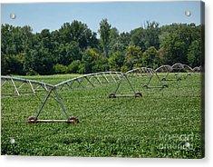Farm Sprinkler System Acrylic Print