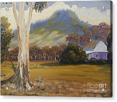 Farm With Large Gum Tree Acrylic Print