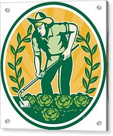 Farmer Gardener With Garden Hoe Cabbage Acrylic Print
