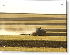 Farmer Working Acrylic Print by James BO  Insogna
