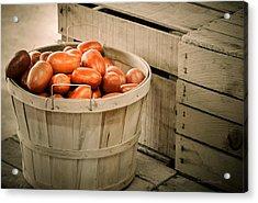 Farmers Market Plum Tomatoes Acrylic Print by Julie Palencia