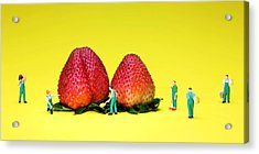 Farmers Working Around Strawberries Acrylic Print by Paul Ge
