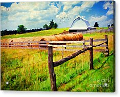 Farming Acrylic Print by Darren Fisher