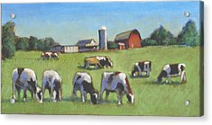 Farming In The Dell Acrylic Print by David Zimmerman